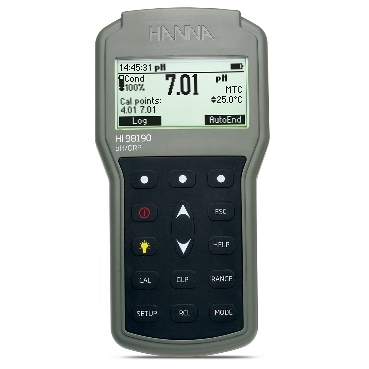 Professional Waterproof Portable pH/ORP Meter - HI98190